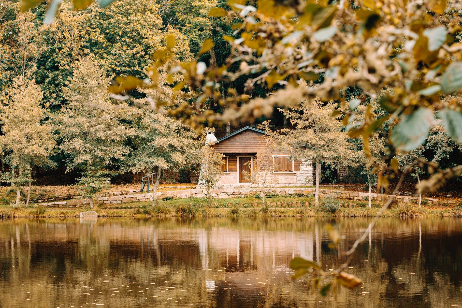 house on coast of lake in forest