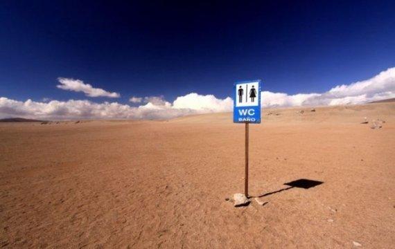 Новые лидеры, или Туалет в пустыне