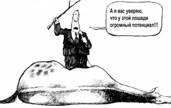 Лошадь сдохла — слезай. О бессмысленности академических реформ в Украине