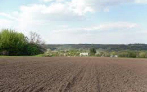 Два «экономических чуда» благодаря украинцу: к вопросу продажи земли
