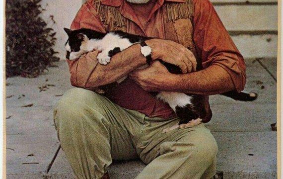 Таинственные кошки Хемингуэя