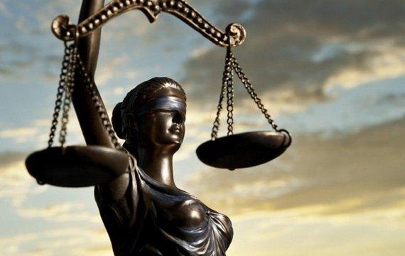 Українська інвест-няня в суддівській мантії