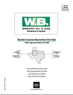 BORDEN CO., TX LSE FOR SALE