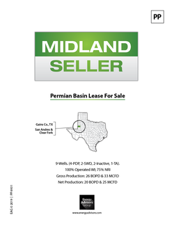 GAINES CO., TX LSE FOR SALE