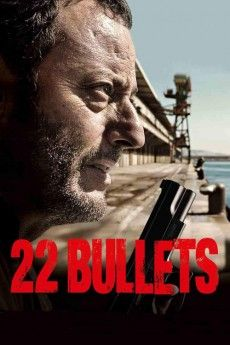 22 Bullets 2010 Poster