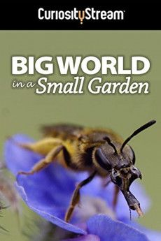 Big World in a Small Garden 2016 Poster