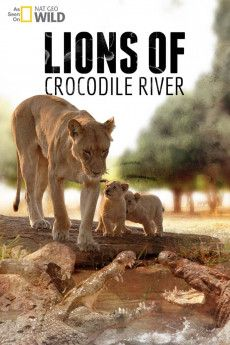 Lions of Crocodile River 2007 Poster