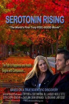 Serotonin Rising 2009 Poster