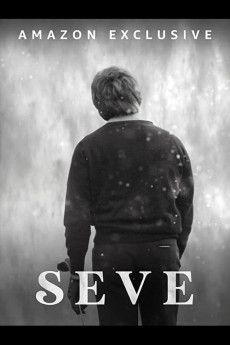 Seve 2021 Poster