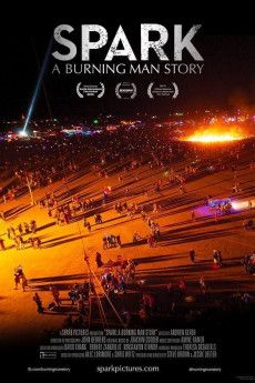 Spark: A Burning Man Story 2013 Poster