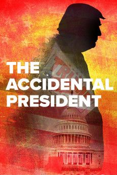 The Accidental President 2020 Poster