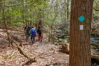 Black Rock State Park hiking