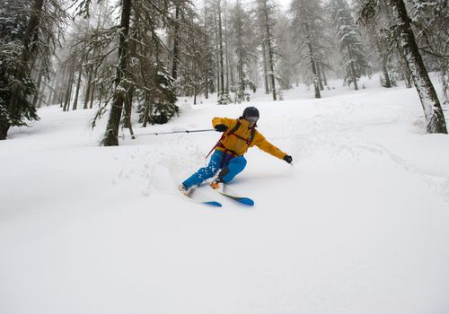 Man enjoying skiing down the slope in the safe area among trees. Cold, foggy day, with lots of fresh snow.
