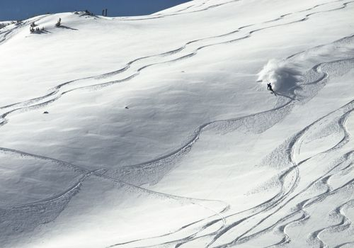 A person telemark skis an open powder field