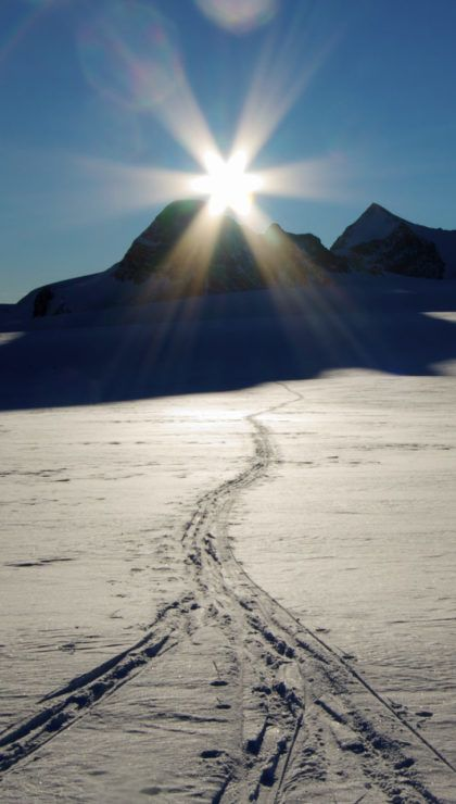 Ski tracks meet across the Wapta Icefield in Banff National Park as first light hits the Glacier.