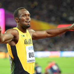usain, bolt, devenir