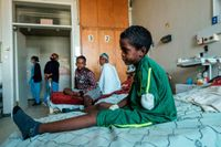 International outrage builds after multiple reports accuse Eritrean troops of massacring 'many hundreds' of Ethiopian civilians last year