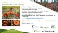 Educação ambiental – Sem Floresta não temos Futuro!