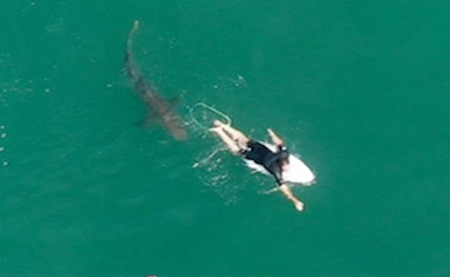'Splash And A Noise': Video Shows Surfer's Close Encounter With Shark