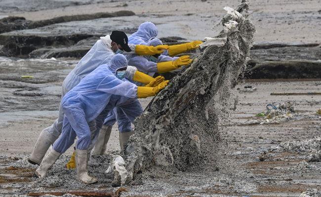 Burning Ship Covers Sri Lankan Beach With Tonnes Of Plastic