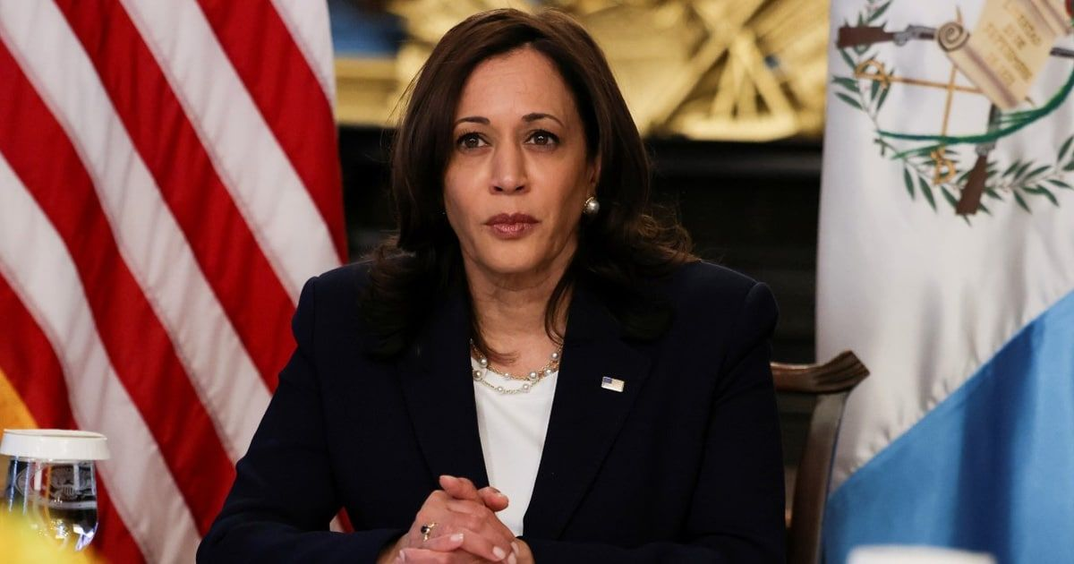 Plane With Kamala Harris Onboard Forced To Turn Around After 'Technical Issue'