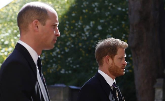 Prince William And Harry Reunite For Diana Statue Tribute