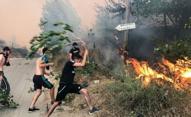 Algeria Wildfires Kill 42, Authorities Blame Arson