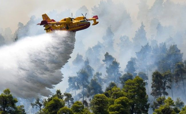 Firefighting Aircraft Crashed In Greece, No Casualties