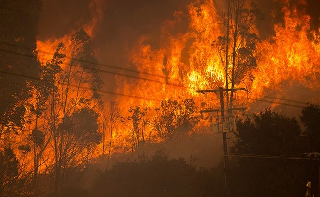 California's Alisal Fire Burns More Than 13,000 Acres, Prompts Evacuations
