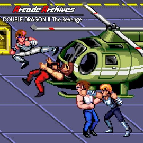 SQ_NSwitchDS_ArcadeArchivesDoubleDragon2TheRevenge_image500w.jpg