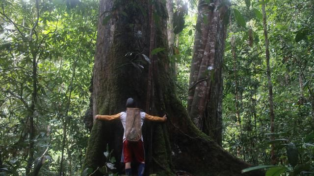 Congratulations, Indigenous Community in Kayan Mentarang National Park Wins Equator Prize 2020 from the UN Agency