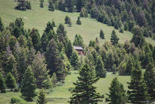 513 Livingston Peak Road Livingston