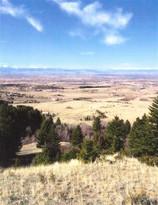 TBD Saddle Mountain Road Bozeman