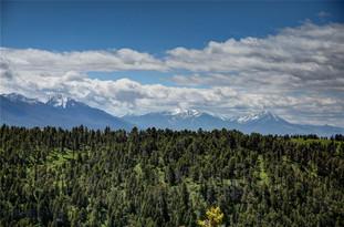 LV61 Livingston Peak Livingston