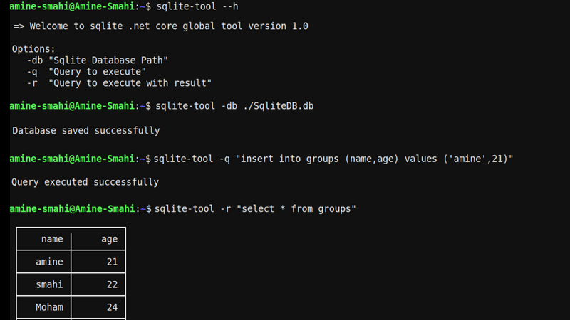 Screenshot for .net console app Sqlite Global Tool