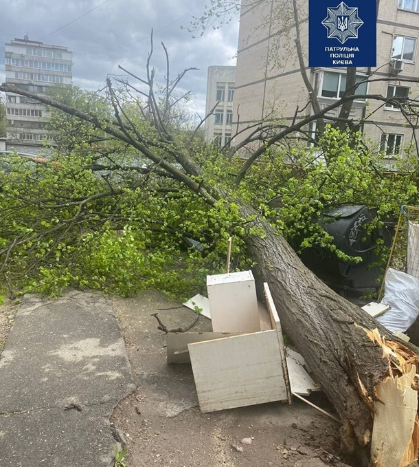 Фото: Патрульна поліція Києва