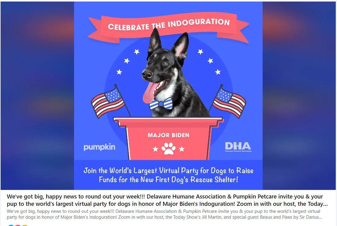 Приглашение на виртуальную вечеринку в честь собаки Байдена