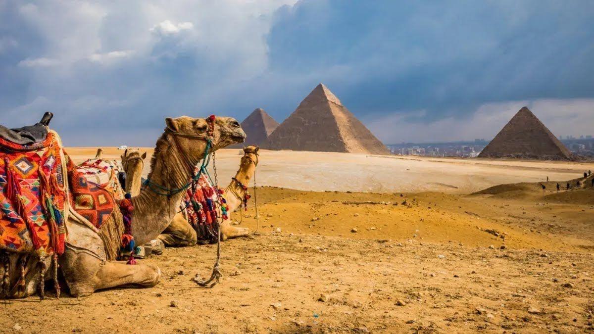 В Египте могут обокрасть туристов