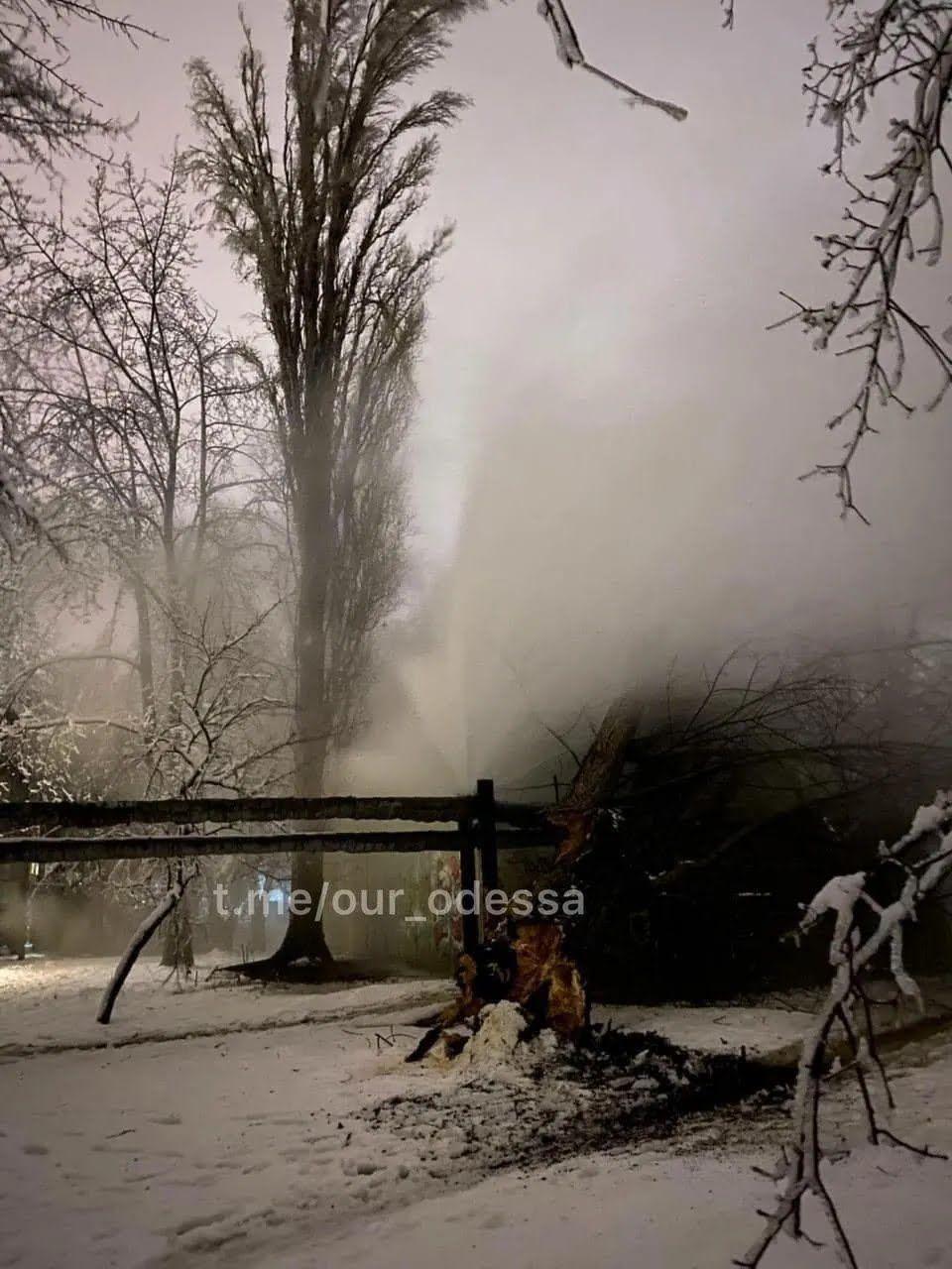 Дерево через сніг впало на теплотрасу