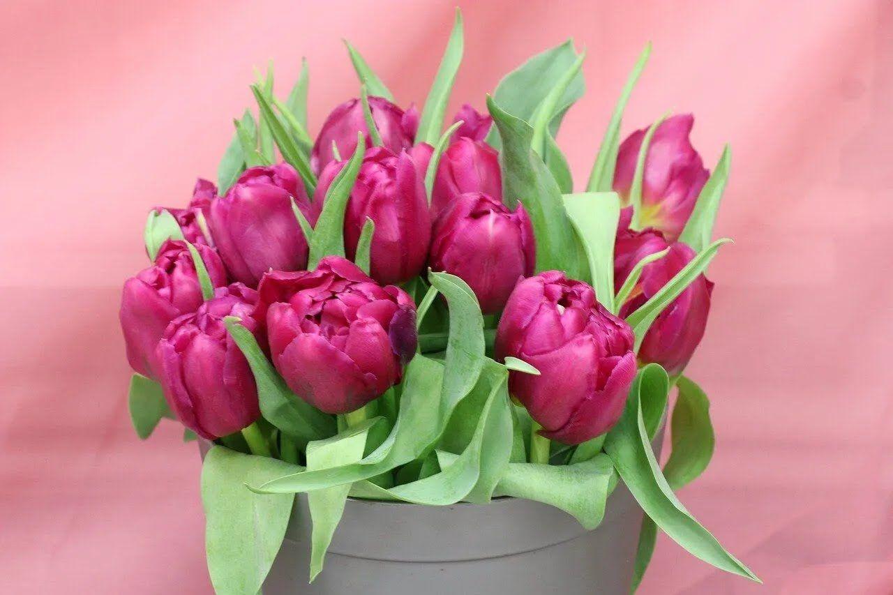 Любой подарок к 8 Марта обязательно нужно дополнить букетом цветов