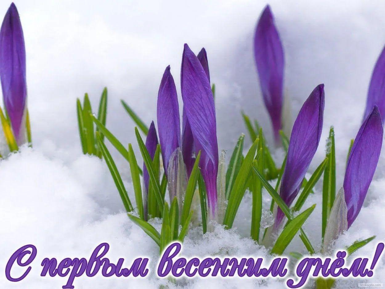 Картинка в перший весняний день