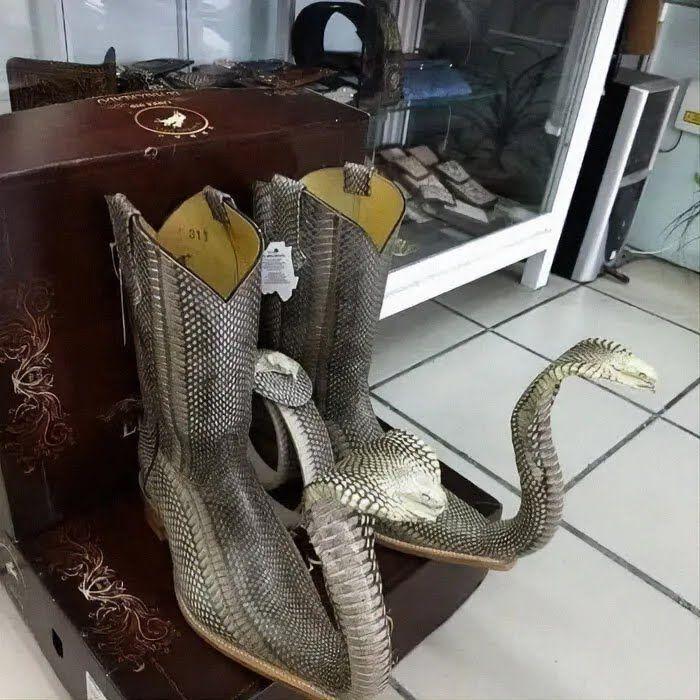 Дизайнер уверен, что змеи ускоряют ходьбу