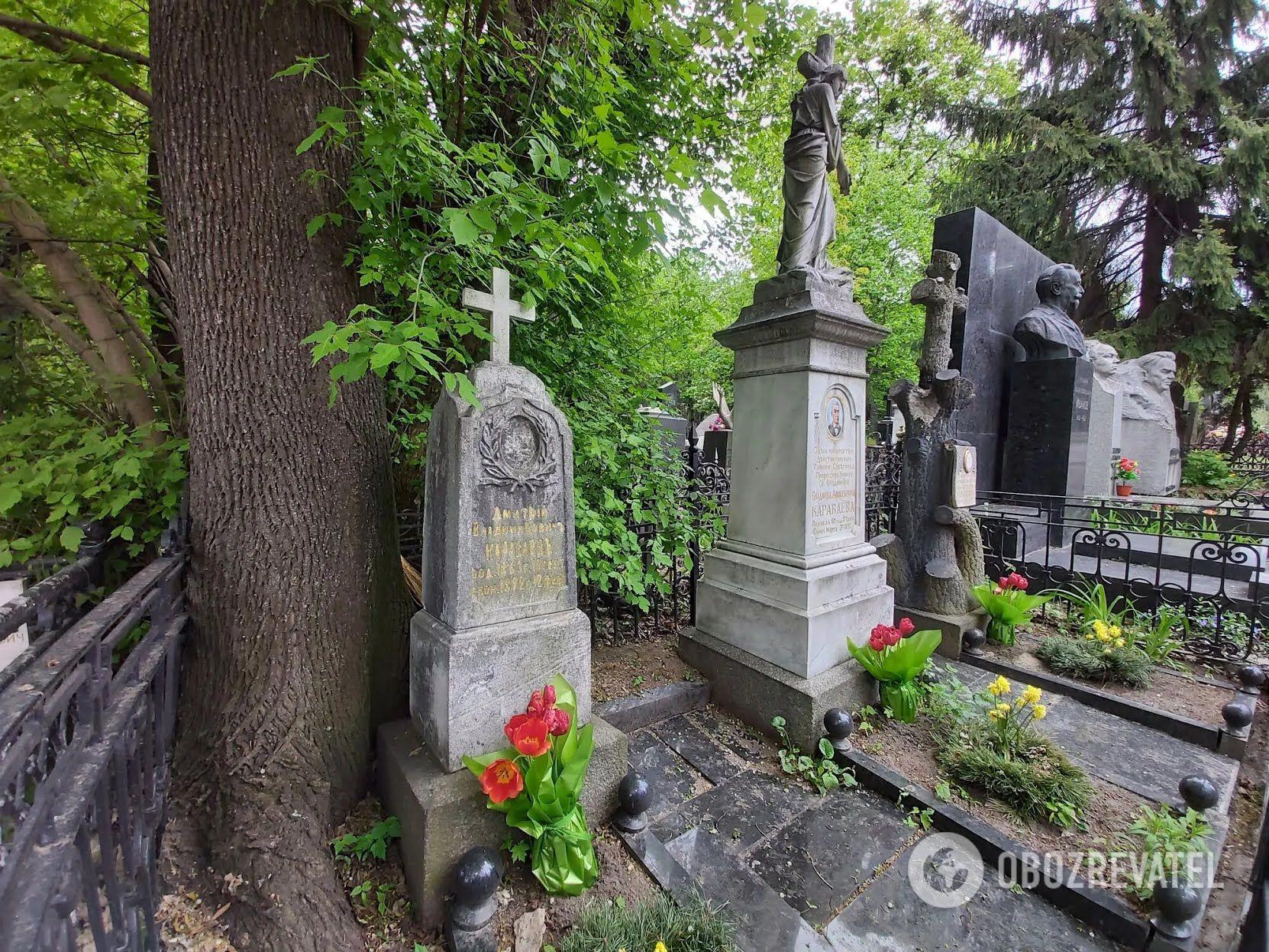 Поховання легендарного лікаря Караваєва не завадило б оновити.