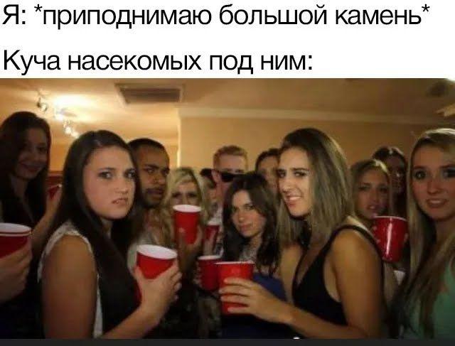 Мем про комах