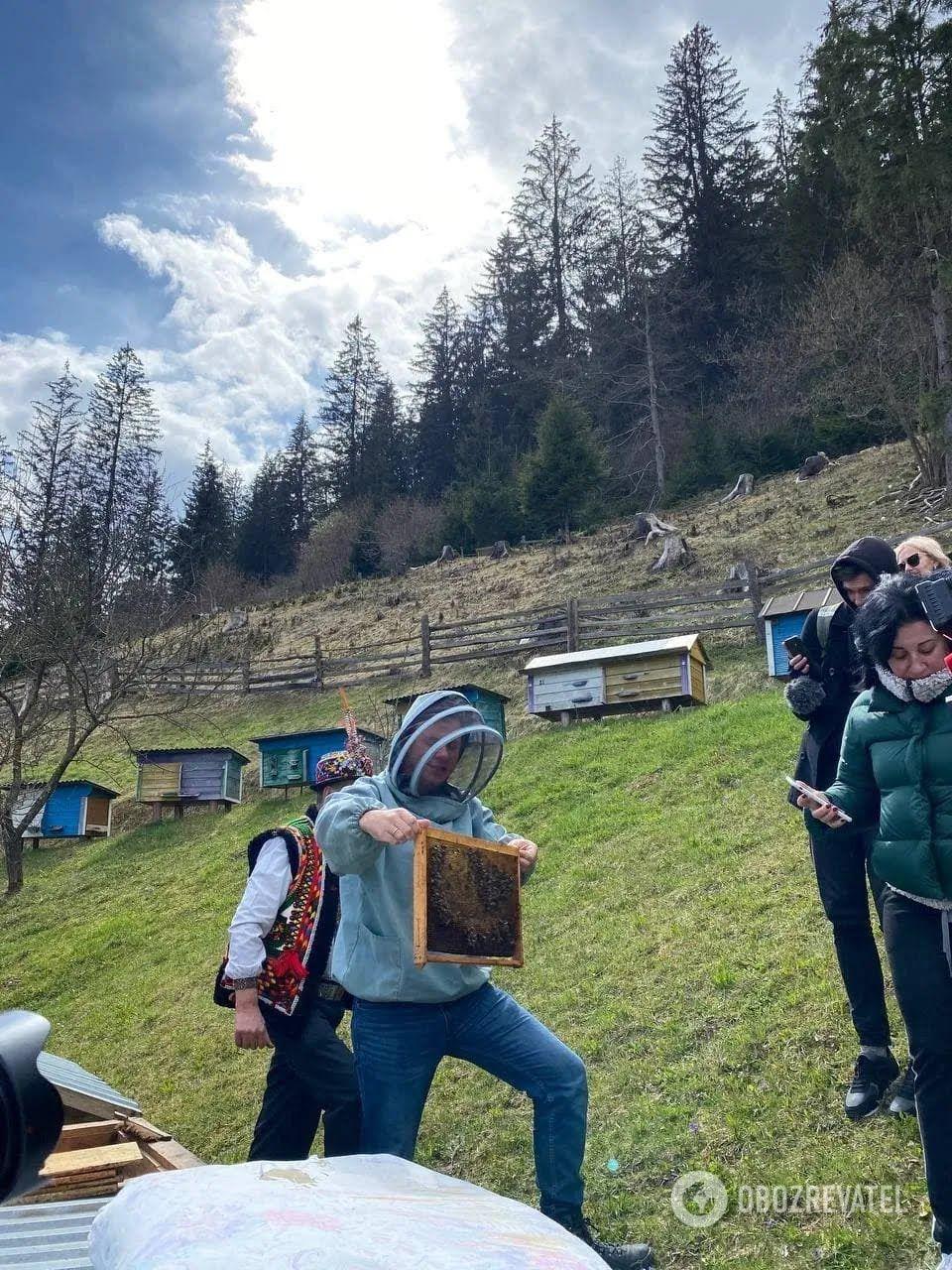 Ще одне надбання Карпат – місцевий гірський мед.