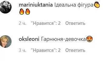 Комментарии поклонников