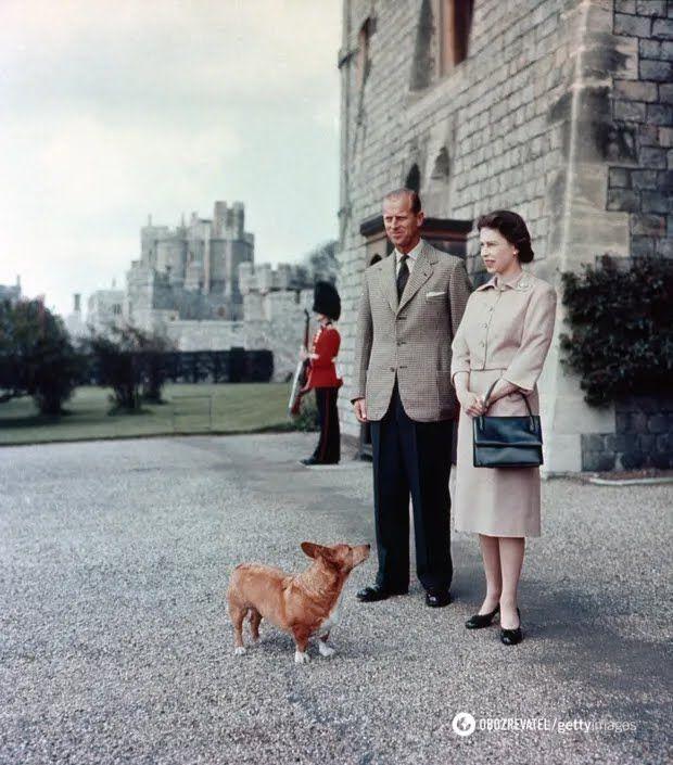 Філіп та Єлизавета у Віндзорському замку з одним з королівських коргі по кличці Шугар