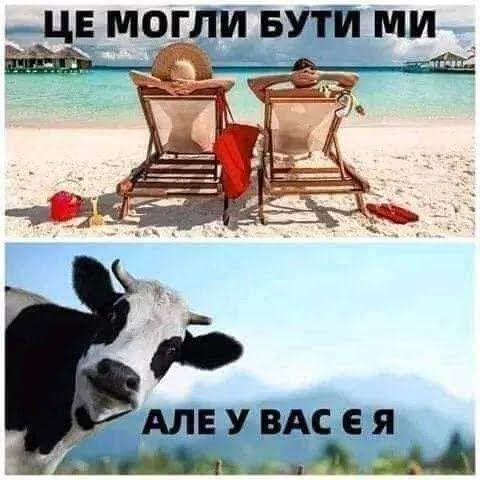 Мем о хозяйстве