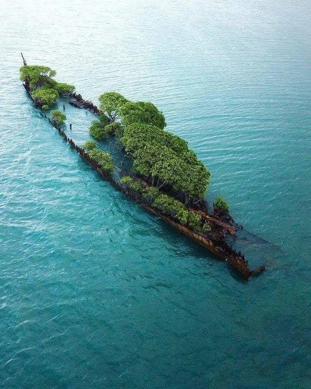 На затонувшем корабле появляется остров.