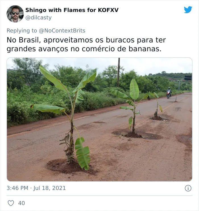 В Бразилии на дороге посадили бананы.